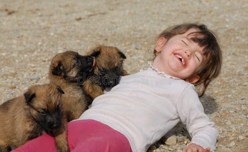Ragazza e cuccioli di risata fotografie stock