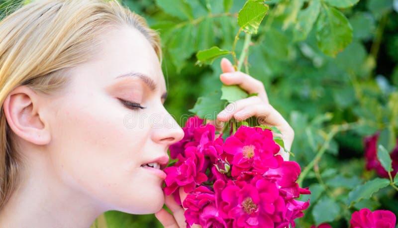 Ragazza e fiori sul fondo della natura Prodotto dell'aroma dell'olio dell'estratto di Rosa Cosmetici e prodotti di cura di pelle  fotografie stock libere da diritti