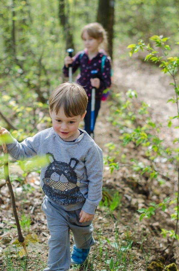 Ragazza e passeggiata o aumento del ragazzo attraverso la foresta in molla in anticipo immagine stock libera da diritti