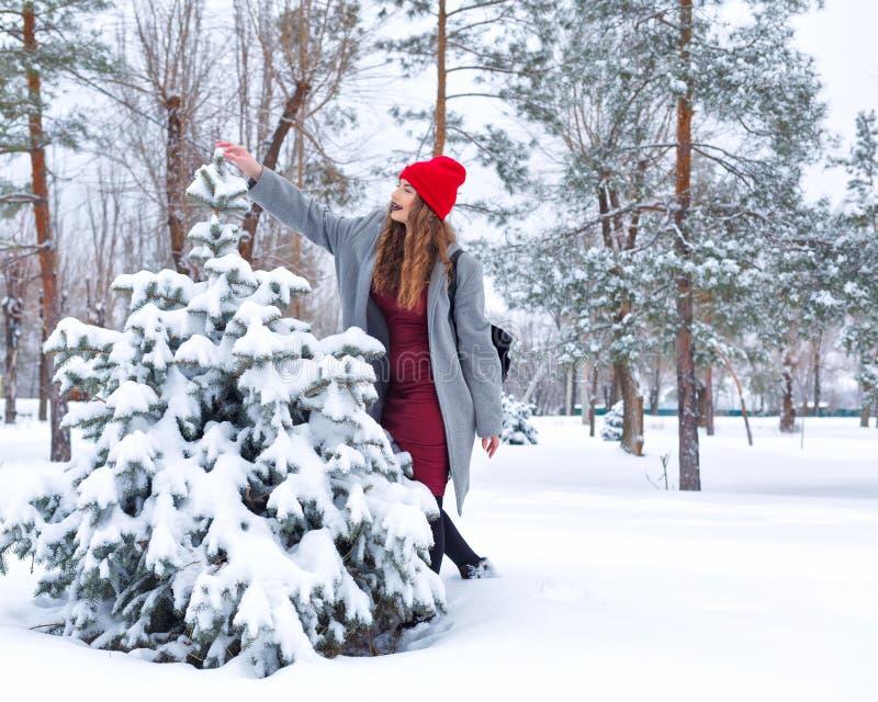 Ragazza ed albero dei pantaloni a vita bassa nell'inverno fotografia stock