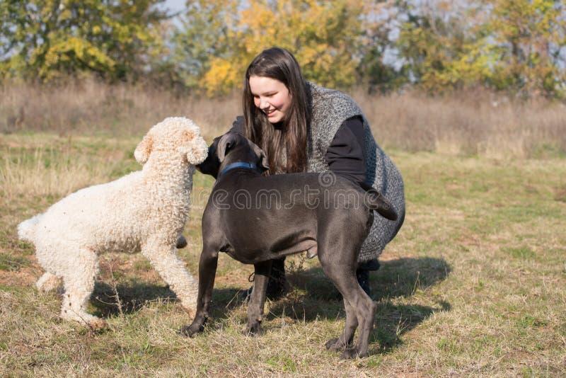 Ragazza ed i suoi cani immagine stock libera da diritti