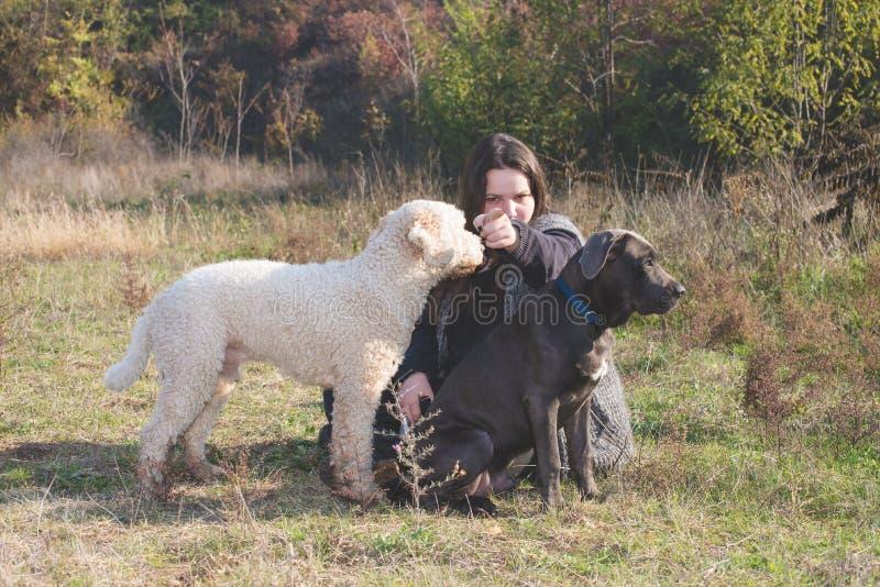 Ragazza ed i suoi cani fotografia stock