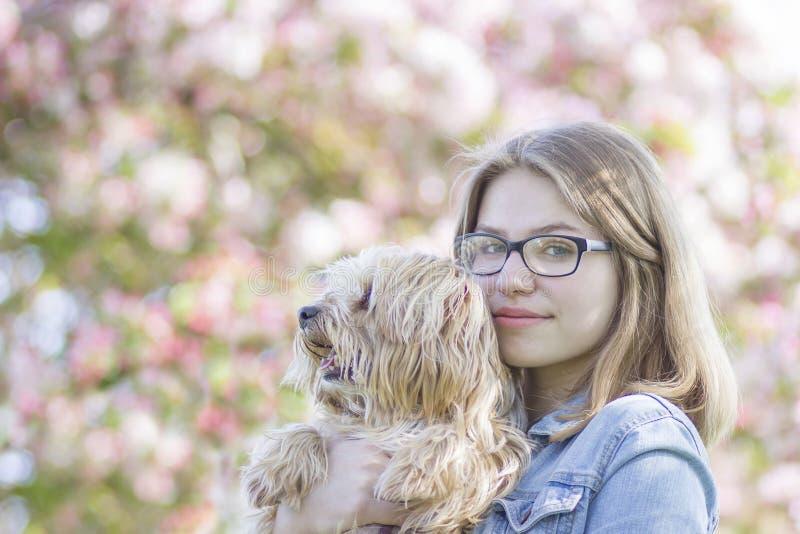 Ragazza ed il suo cane immagini stock libere da diritti