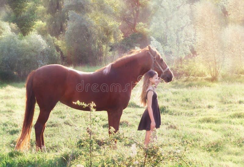 Ragazza ed il suo cavallo sul campo soleggiato fotografia stock