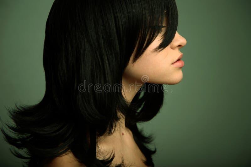 Ragazza elegante con capelli neri immagini stock