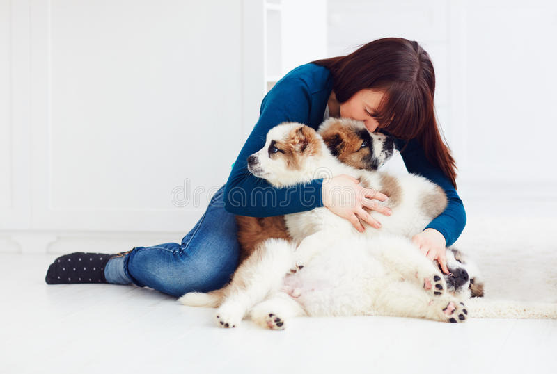 Ragazza felice che si siede sul pavimento con i cuccioli caucasici del pastore fotografia stock