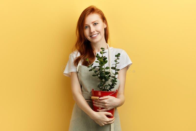 Ragazza felice dello zenzero che tiene un secchio con il fiore fotografia stock
