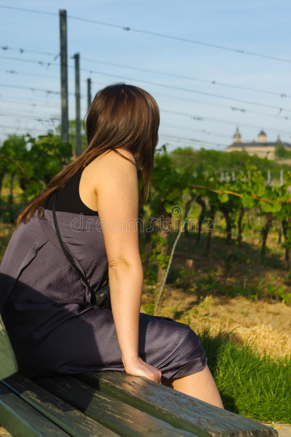 Ragazza felice sul banco che si rilassa in vista del landcape del giacimento dell'uva fotografia stock libera da diritti