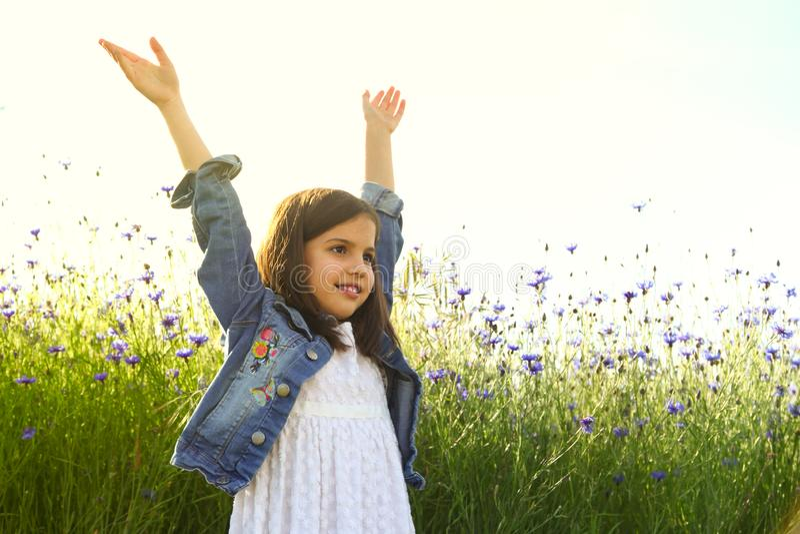 Ragazza felice sul campo di bello fiore blu di fiordaliso fotografie stock libere da diritti