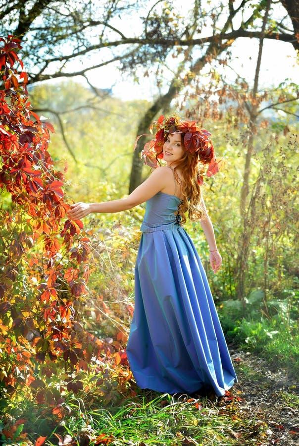 Ragazza felice in una corona dalle foglie di autunno, in un vestito blu, stante vicino ai cespugli rossi su un fondo giallo un gi fotografia stock libera da diritti