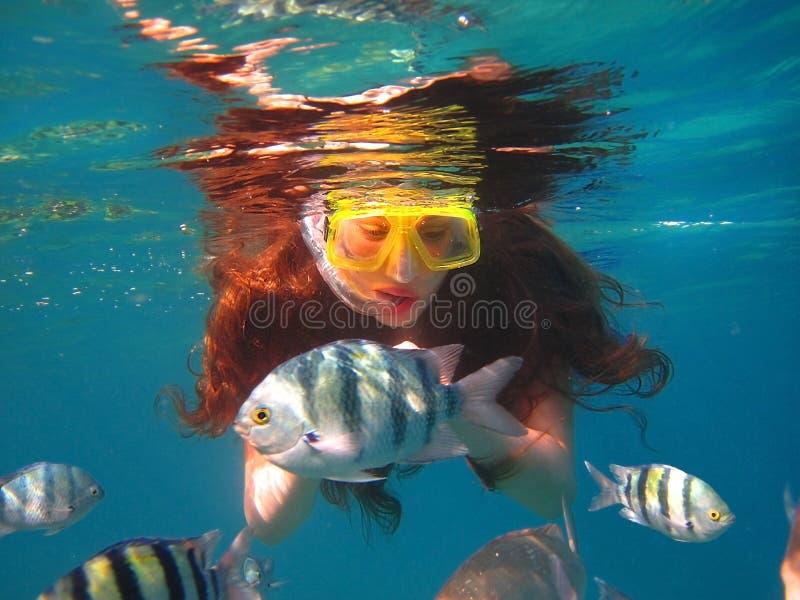 Ragazza fra il pesce tropicale in Mar Rosso, Eilat, Israele immagini stock libere da diritti