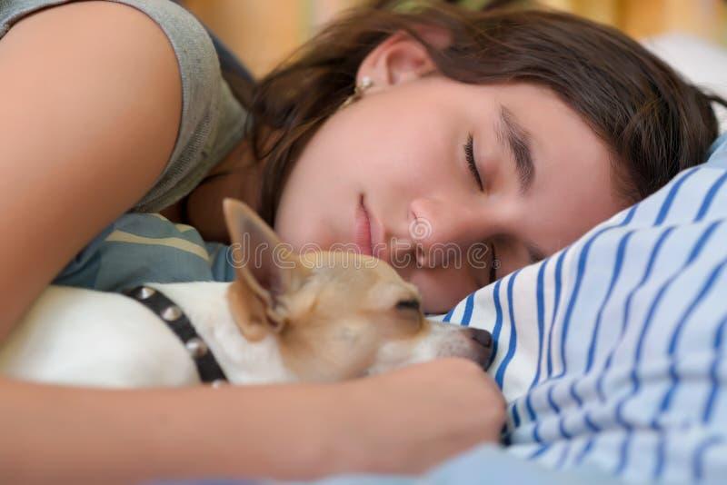 Ragazza graziosa che dorme con il suo cane della chihuahua immagini stock