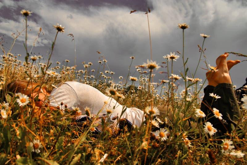 Download Ragazza nel campo immagine stock. Immagine di fiori, donna - 3894759