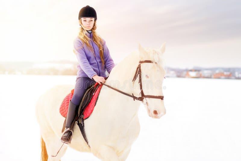 Ragazza nel cavallo bianco di guida del casco sul campo fotografia stock
