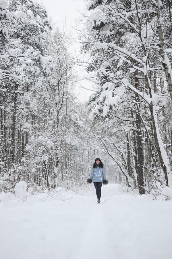 Ragazza nella scena della neve del terreno boscoso fotografie stock libere da diritti