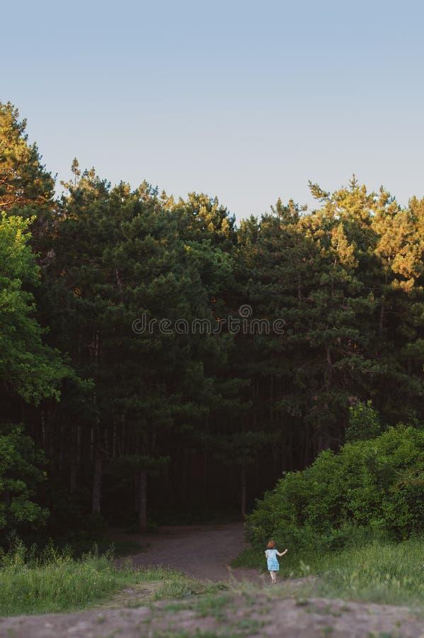 Ragazza nelle fughe blu del vestito nella foresta immagine stock libera da diritti