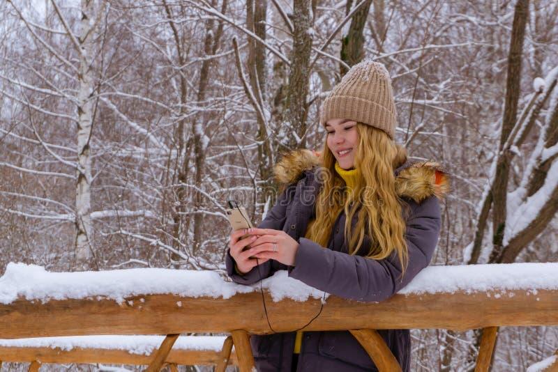 Ragazza online nel parco di inverno immagini stock libere da diritti
