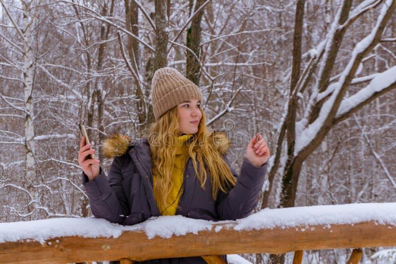 Ragazza online nel parco di inverno fotografia stock libera da diritti