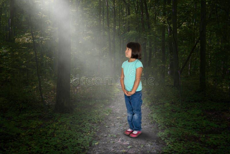 Ragazza persa, legno, natura, speranza, pace fotografie stock libere da diritti