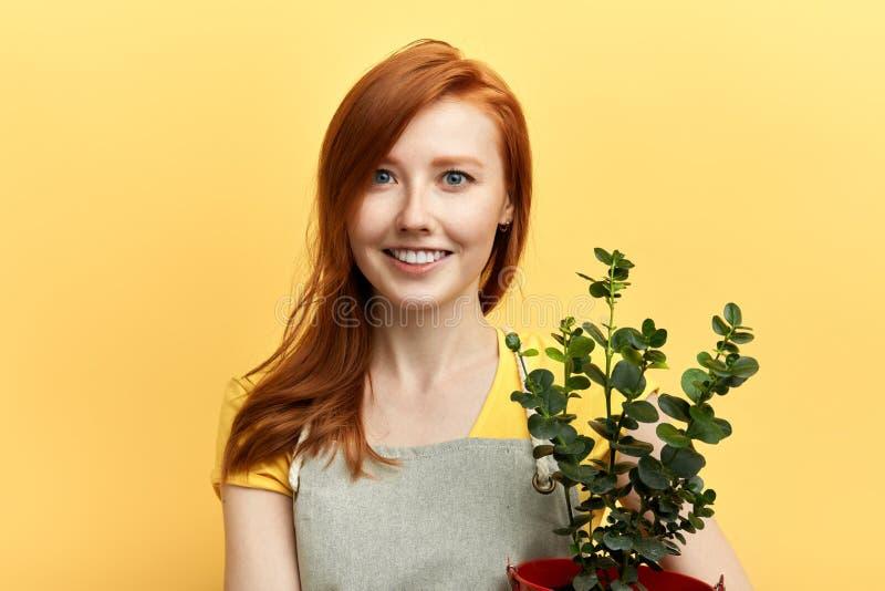 Ragazza positiva sveglia che vende i fiori fotografie stock libere da diritti