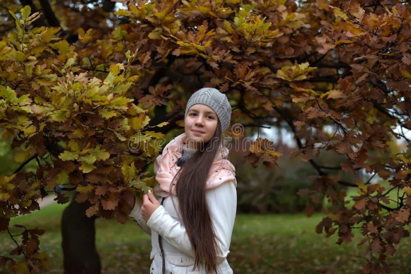 Ragazza russa dai capelli lunghi sveglia immagine stock