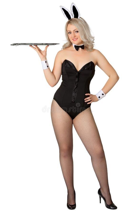 Ragazza sexy - cameriera di bar in un vestito del coniglietto fotografia stock libera da diritti