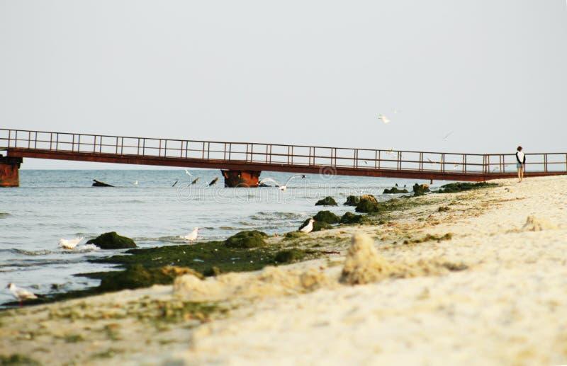 Ragazza sola su una spiaggia abbandonata vicino al pilastro fotografie stock libere da diritti