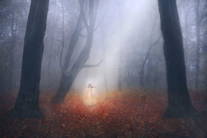 Ragazza spettrale che gioca il violino in una foresta nebbiosa fotografia stock