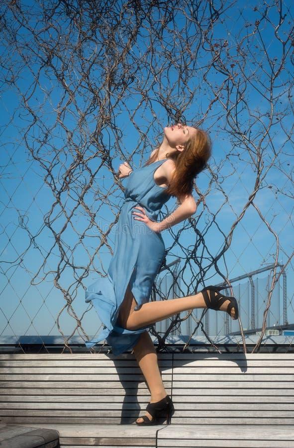Ragazza stupefacente in vestito blu fotografia stock libera da diritti