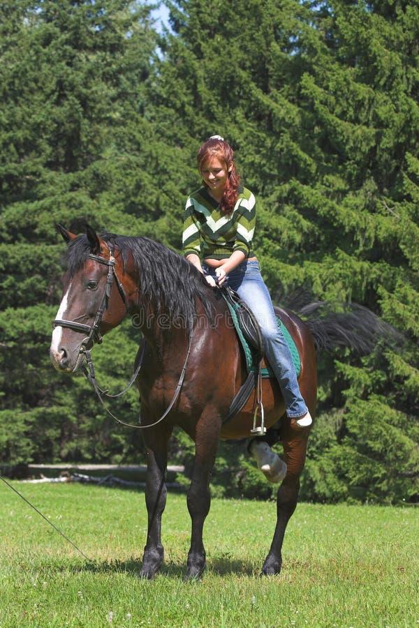 Ragazza sul cavallo fotografie stock