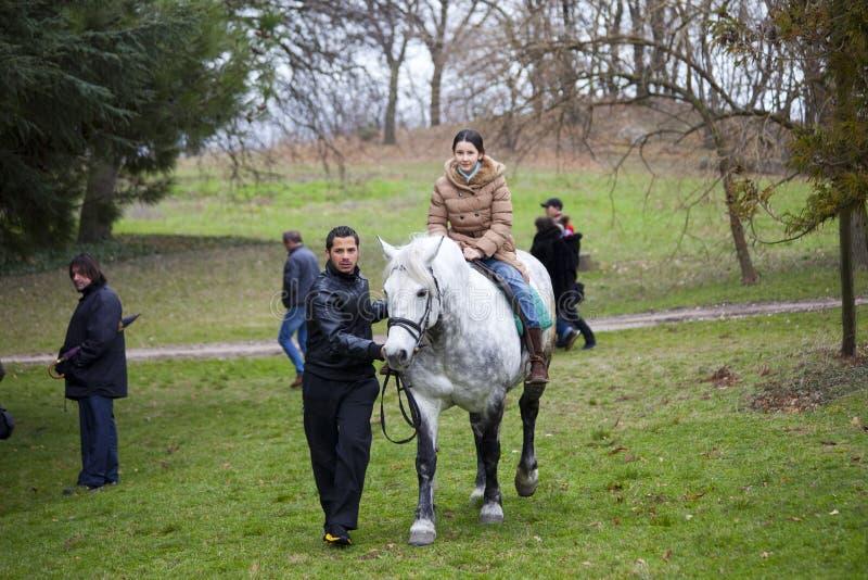 Ragazza sul cavallo immagini stock