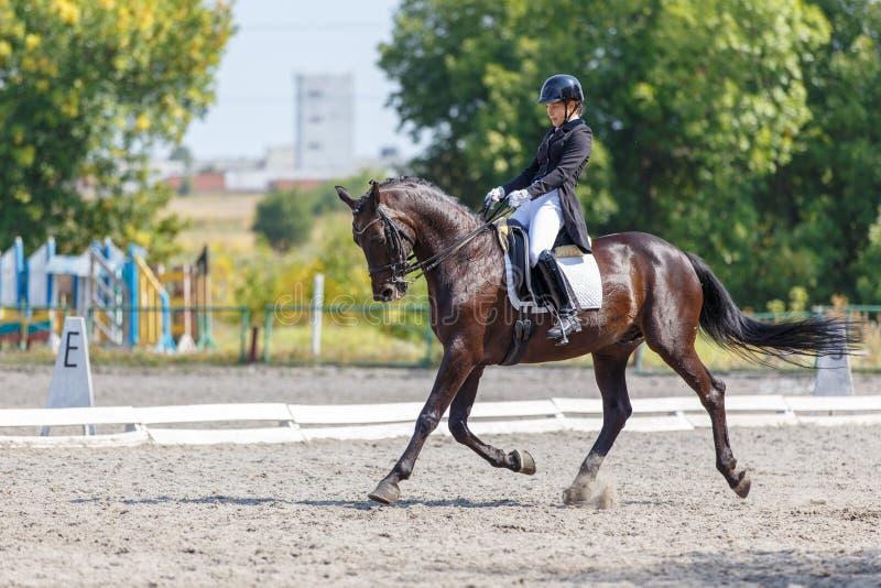 Ragazza sul cavallo di baia che esegue la prova di dressage fotografia stock libera da diritti