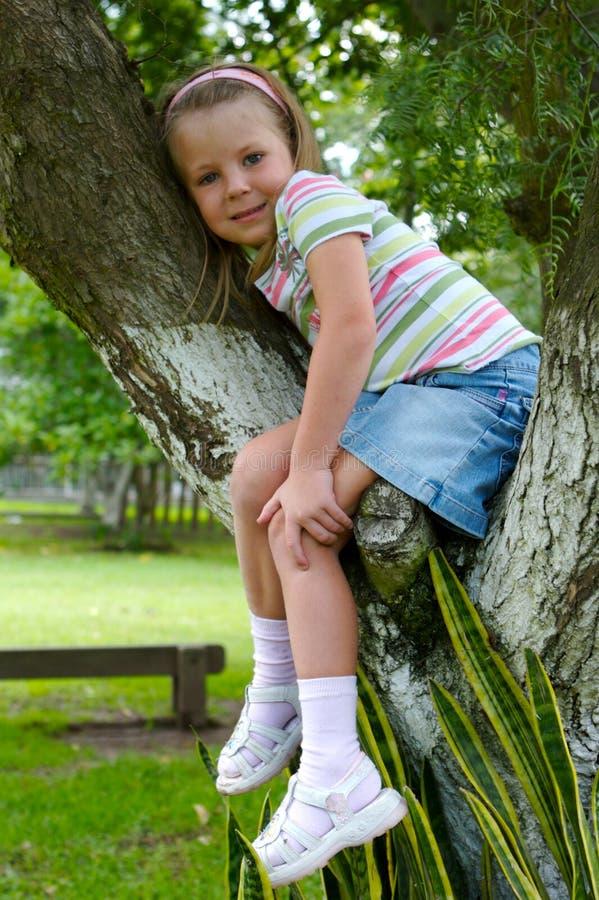 Ragazza sull'albero fotografie stock