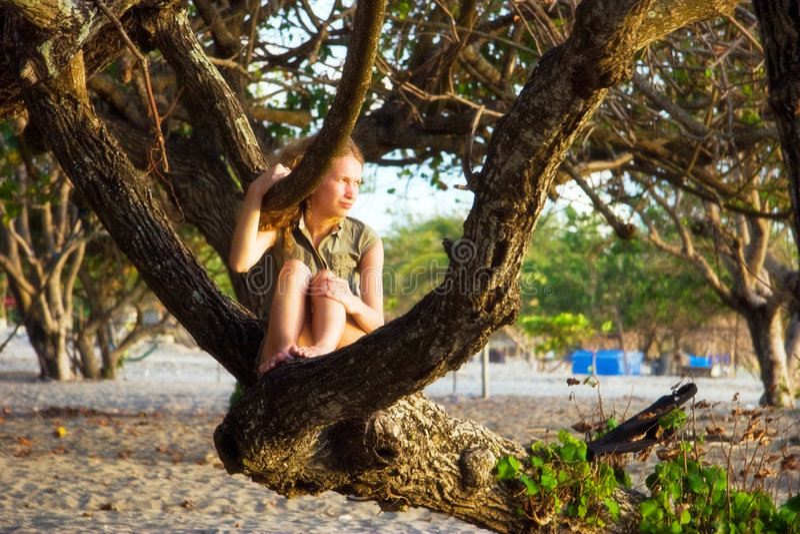 Ragazza sull'albero della spiaggia immagini stock