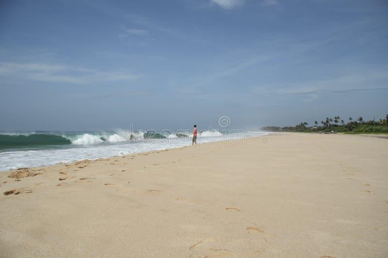 ragazza sulla spiaggia dell'oceano nello Sri Lanka durante la tempesta immagini stock