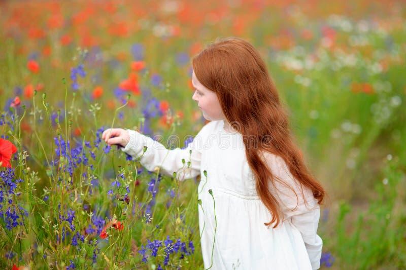 Ragazza sveglia del piccolo bambino con la testa di rosso che tiene un fiore all'aperto io fotografia stock