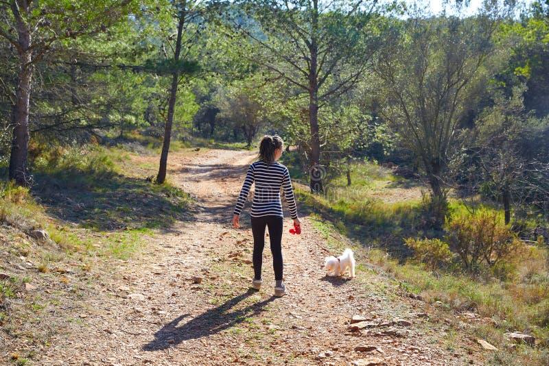 Ragazza teenager che cammina con un cane bianco in foresta fotografia stock libera da diritti