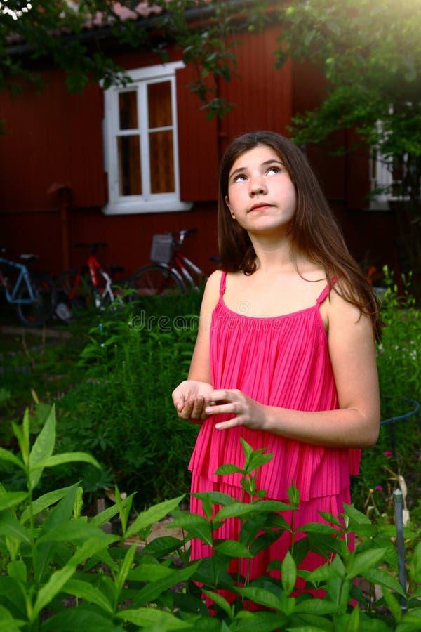 Ragazza teenager con capelli marroni lunghi nella fine rosa del vestito sulla foto fotografia stock libera da diritti