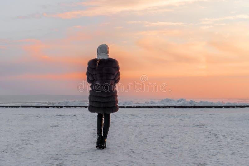 Ragazza in una pelliccia contro lo sfondo di un cielo di sera di inverno fotografie stock libere da diritti