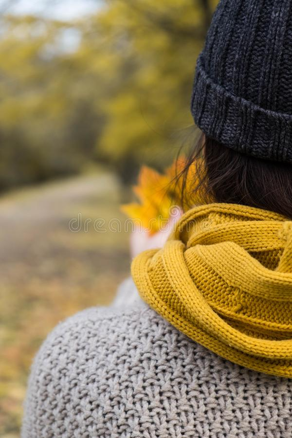 Ragazza in una sciarpa gialla con le foglie di acero in sue mani nel parco di autunno immagine stock libera da diritti
