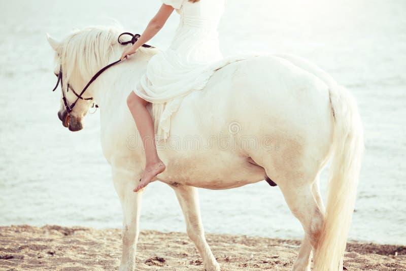 Ragazza in vestito bianco con il cavallo sulla spiaggia immagine stock