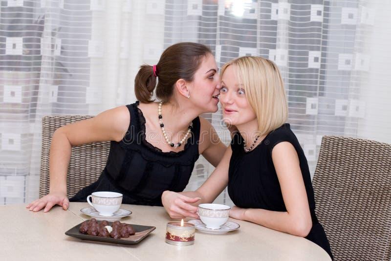 Download Ragazze fotografia stock. Immagine di caucasico, cucina - 3882064