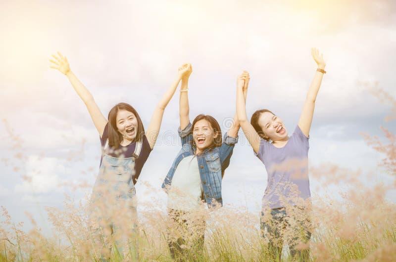 Ragazze felici nel campo di erba con il filtro d'annata fotografia stock