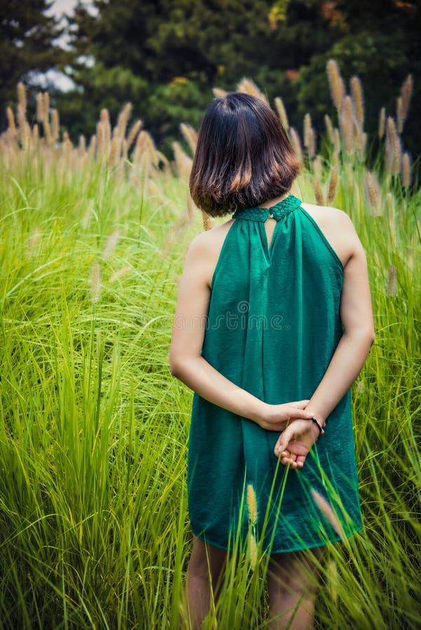 Ragazze in gonne verdi, bristlegrass verde immagine stock
