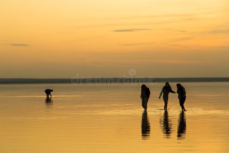 Ragazze sul lago di sale immagini stock libere da diritti