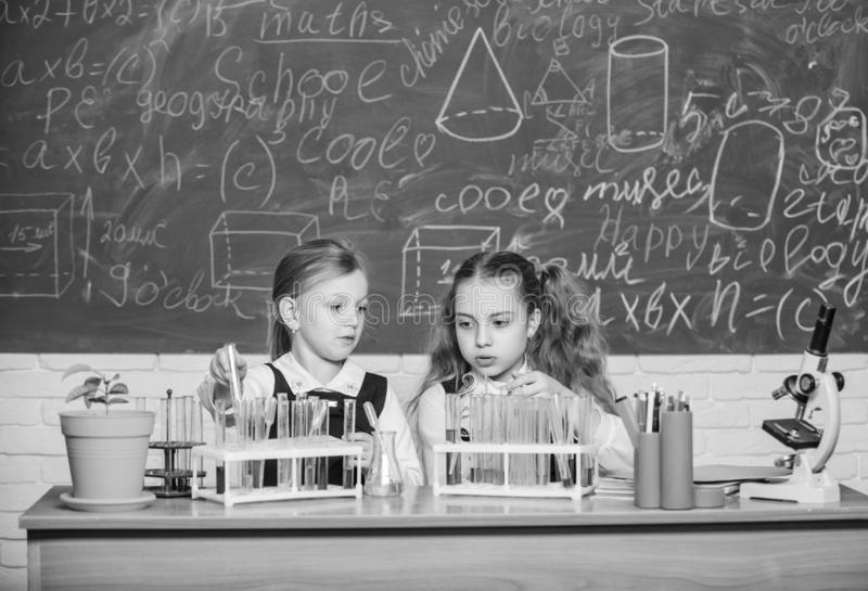 Ragazze sulla lezione di chimica della scuola Compagni di corso della scuola Bambini occupati con l'esperimento Provette con vari fotografie stock libere da diritti