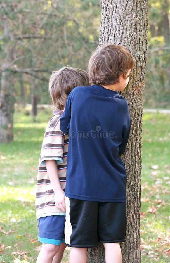 Ragazzi che danno una occhiata intorno all'albero fotografia stock libera da diritti