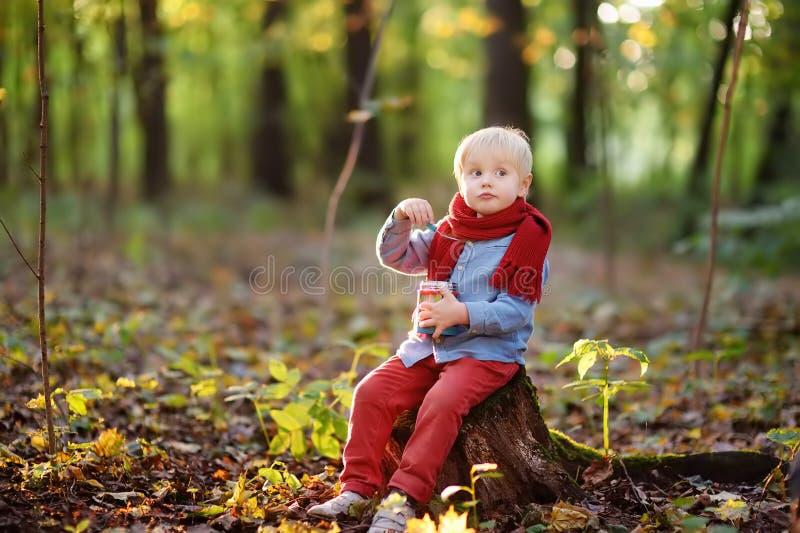 Ragazzino che si siede sul ceppo di legno e che mangia pranzo sano durante la passeggiata nel bambino della foresta con alimento  immagini stock