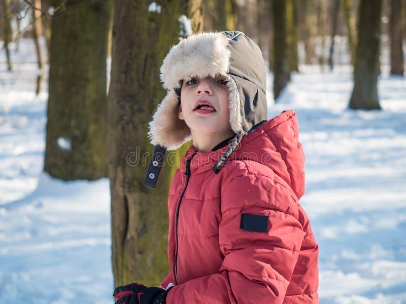 Ragazzino divertente sveglio in rivestimento rosso al fondo del parco di inverno fotografia stock