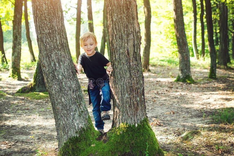 Ragazzino felice al bambino allegro della foresta che gioca sul parco al giorno soleggiato Passeggiata della famiglia alla natura immagine stock libera da diritti